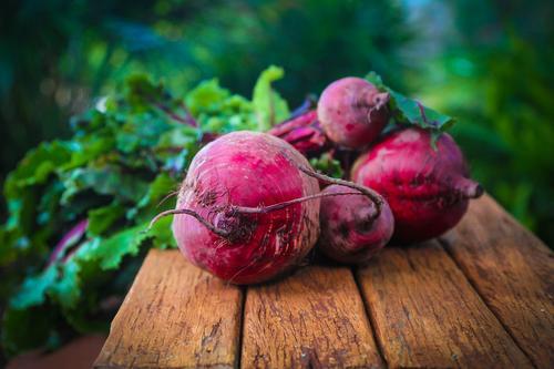O que eu aprendi com as beterrabas do quintal: indo além do alimento